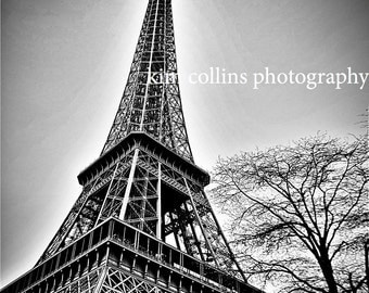 Eiffel Tower with Tree black& white Fine art photography-Paris France,multiple sizes available-landscape-Eiffel Tower-Parisian-photo