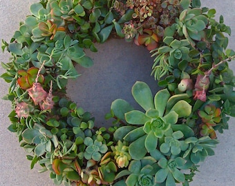 Succulent DIY, Wreath, Centerpiece, Christmas Decor, Mothers Day Gift