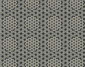 Starcomb in Stones from Parson Grey Curious Nature Collection