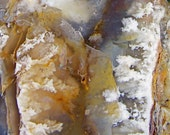 Gorgeous plume agate specimen from Oregon