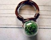 Moss Terrarium Vintage Brass Ring
