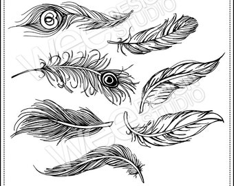 FEATHER digital clipart graphics - png jpeg & eps (personal or commercial use)