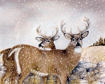 Whitetails, 5 x 7 print on acid free 8.5 x 11, 65 lb., off-white matte, signed by me, carefully shipped flat.