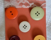 Set of 5 Button Magnets