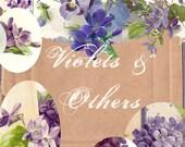 Violets and Others - Instant Download Digital Collage Sheet - Vintage Images - Summer - Violets - Purple Flowers