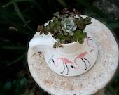 Succulents Planted in Mid Century Style Flamingo Mug
