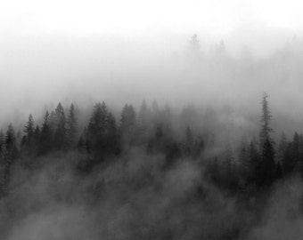 Diffusion - Black & White Photography / Imaging / mist / fog