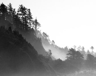 Land of Mist and Mystery - Black & White Photorgraphy / Imaging - mist / fog / mystery / forest / coast