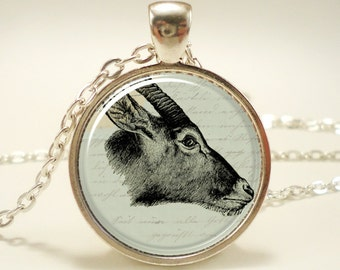 Antelope Necklace (0569S1IN)