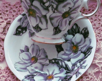 Queen Anne Magnolia fineEnglish  bone china Teacup and Saucer MINT Numbered