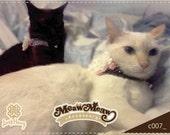 Cat Collar White Rose