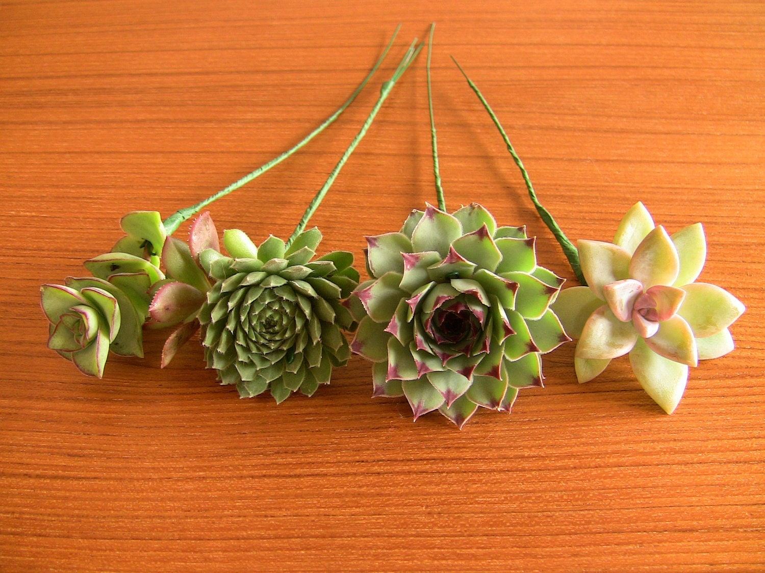 Diy Wedding Flowers Succulents : Wired succulents for diy bouquet