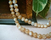 "5.8mm Brown Mother of Pearl Round Shell beads, Item M151 - 7.5"" Strand"