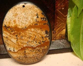 Owyhee Picture Jasper Intarsia Pendant Bead 44x34x6mm, Item M198