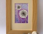 ACEO Purple Dandelions