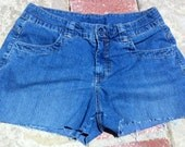 Blue Zipper Fly and Buttons Jean Shorts High Waisted Denim Distressed Jeans Booty Shorts Size 10