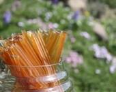 Custom listing for Shannon Honey Sticks Pure Wildflower Honey  - 25 Honey Filled Sticks