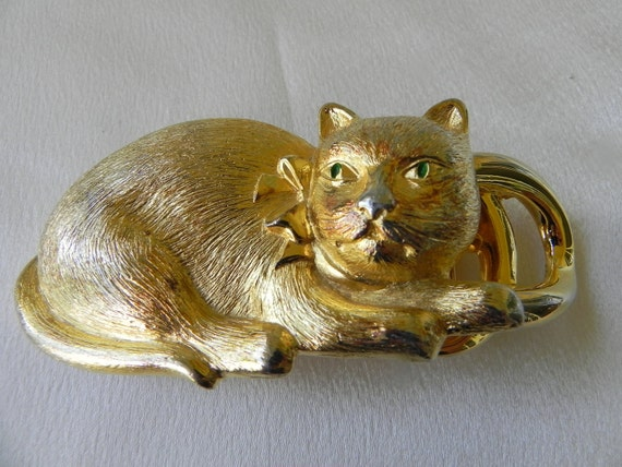 Adorable Large Gold Cat With Striking Eyes and Wearing Bow Belt Buckle