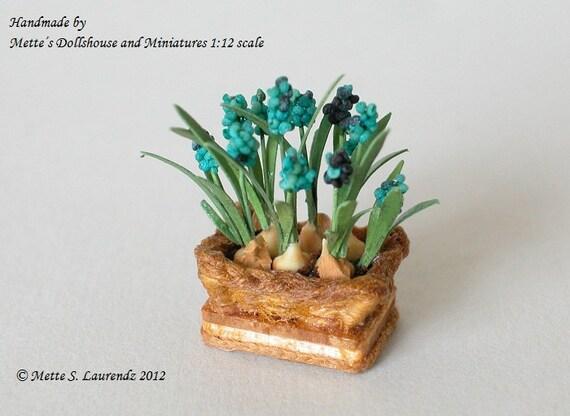 Dollhouse plant - Grape Hyacinth 'Muscari Blue' planted in basket  -  1:12  Scale miniature (GF4)