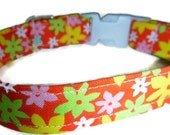 "Orange Floral Dog Collar - Orange Lemon and Lime Floral -""Sunshine""-NO EXTRA CHARGE for colored buckles"