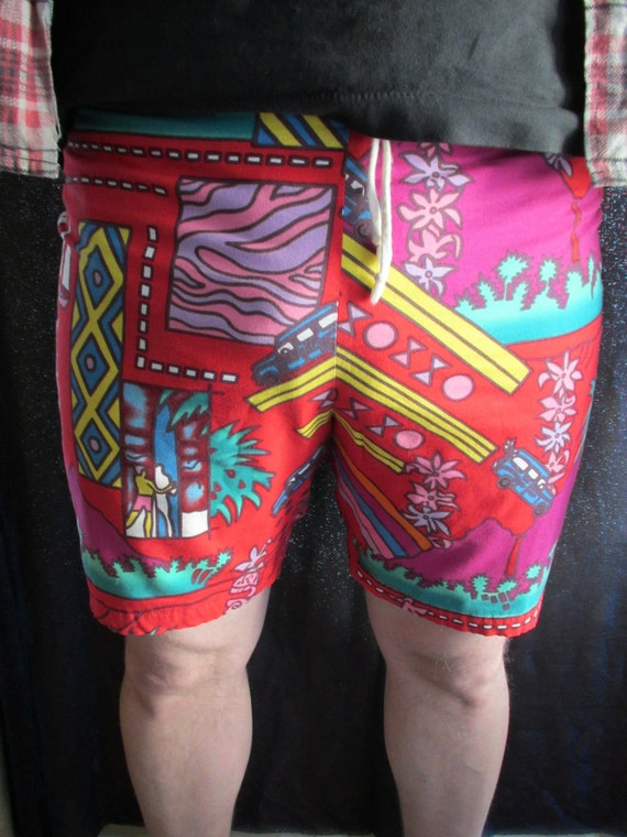 Vintage Funky Cool Multi-colored Summer Beach Shorts / Swimming Trunks