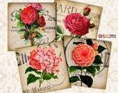 VINTAGE SHABBY FLOWERS 3.8x3.8 inch & 4x4 inch Digital Collage Sheet Printable Download for Coasters Magnets Greeting Cards