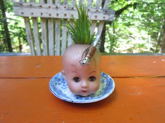 Mini Vintage Doll Head Planter with Air Plant