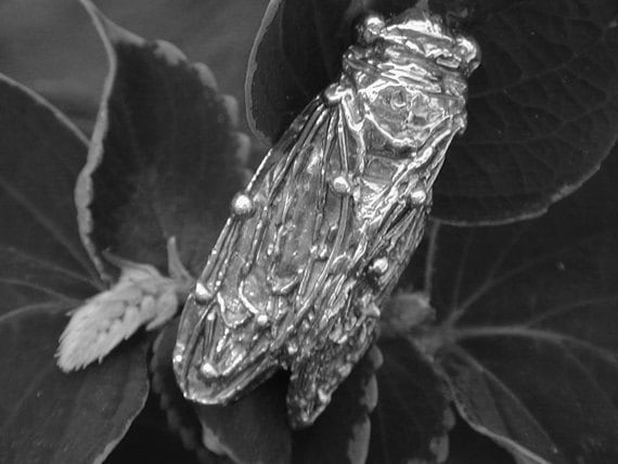 Sterling Silver Pin Brooch CICADA INSECT JEWELRY Cicada Pin Handmade Insects from Elegant Insects Jewelry.