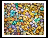 A Whole Lot of Seashells 2 - Fine Art Giclee Print