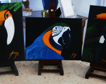 Tropical Bird Pair Original Paintings Blue & Gold Macaw and Toucan - Introductory SALE price