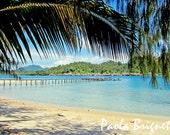 Travel Beach Photography Nature Photography Palm Tree on Blue Sea Indonesia Art, 8x10, Emerald, Palm Tree, Beach Art, Wall Art