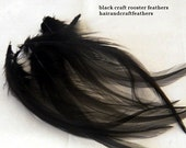 Craft Feathers Black
