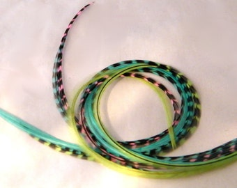 Long Feather Extensions, Hair Feathers Extensions bundle lime green, turquoise and pink tropical summer collection