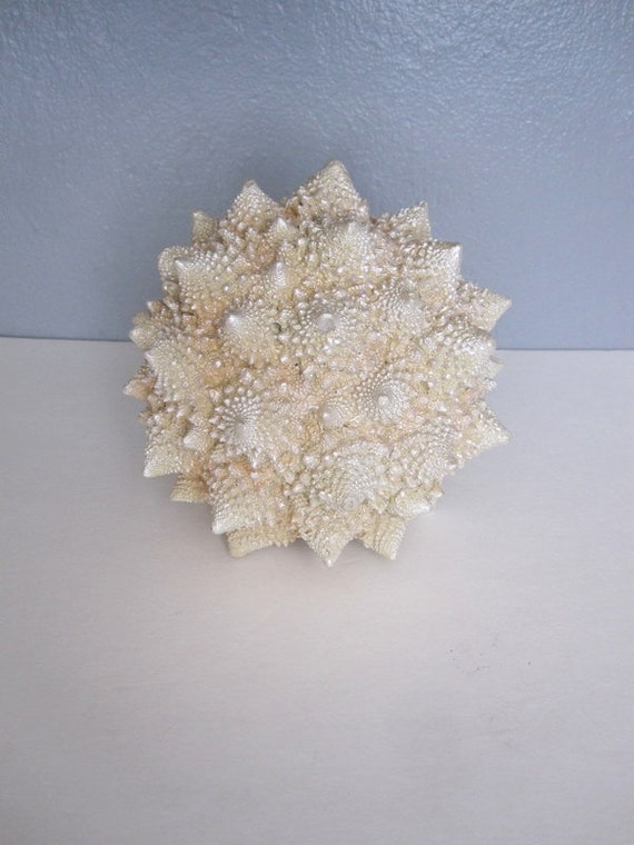 Large Ceramic Sea Shell Ball
