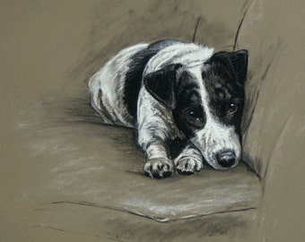 Jack Russell Terrier dog art limited edition fine art print dog print 'In my spot' from an original chalk and charcoal sketch drawing