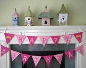 Banner-Princess Birthday