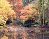 8 x 12 Print - Autumn in Melbourne - Alfred Nicholas Garden / Fine Art Photography / Australia / Home Decor / Nature Photography