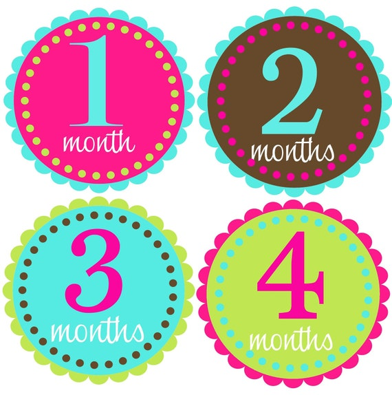 Monthly Baby Girl Stickers-Baby Month Stickers-Great Baby Shower Gift- Monthly Milestone Stickers- Just Born Sticker Included