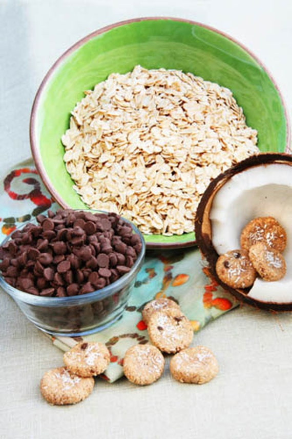Carob and Coconut Bites All-Natural Dog Treats