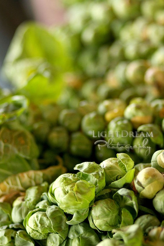 Brussels Sprouts - Food Photography - Kitchen Art - Farmers Market - Produce Photography - Organic - Gardening