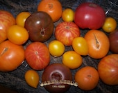 SALE - Jakes Heirloom Mix Bag of Tomato Seeds -SALE ITEM