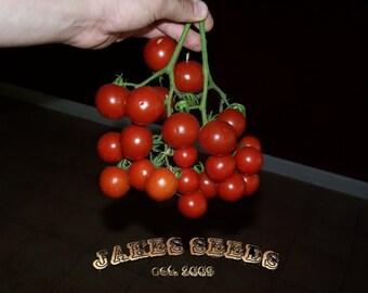 Jake's Red Cherry Heirloom Tomato Seeds -SALE ITEM