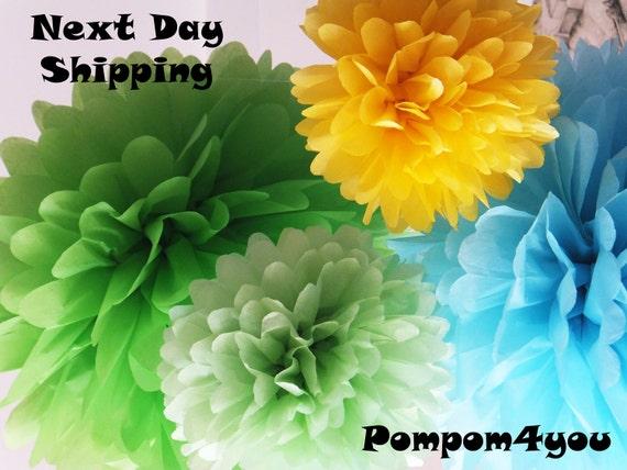 20 Tissue Paper Pom Poms and 5 FREE MINI Pom poms - Next Day Shipping
