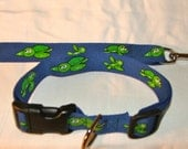 The Turtle always Wins the Race - Dog Collar and Leash