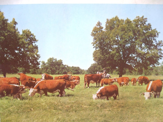 Vintage Poster Print Historic Nature and Agriculture Advertisement (Texas) SHIPPING INCLUDED