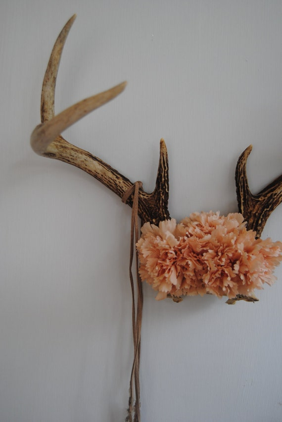 Deer Antlers with Flowers & Feathers - Wall Hanging Taxidermy 7 Point Rack Home Decor Peach Pink Carnations Pheasant Jewelry Necklace Holder