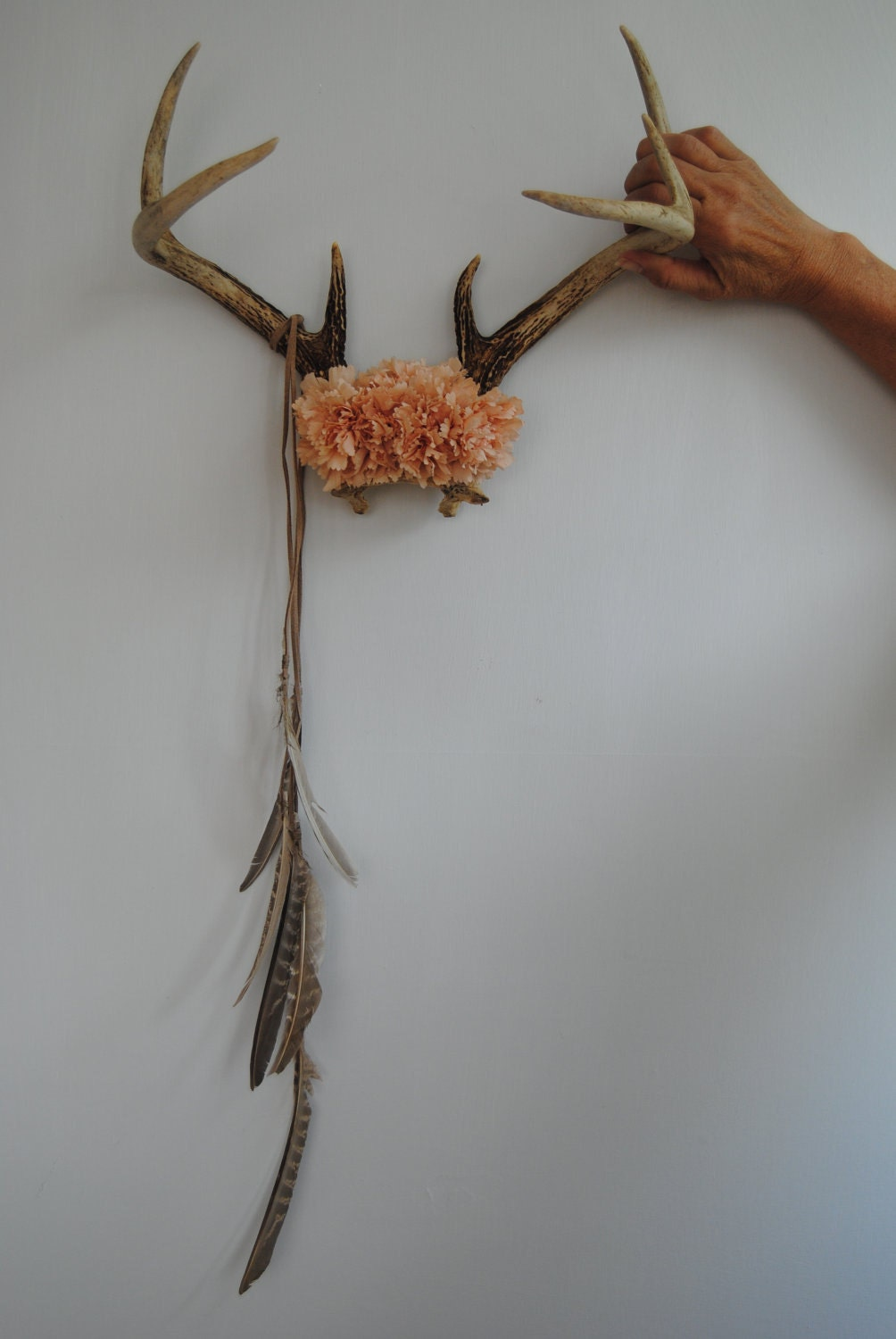 Deer Antlers With Flowers Amp Feathers Wall Hanging Taxidermy