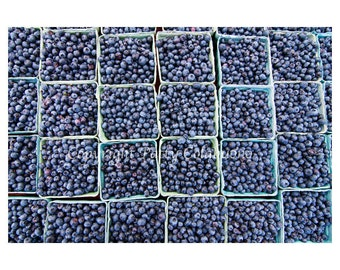 Blueberries Note Cards, Set of 4, Fine Art Photography, Blank, Fruit