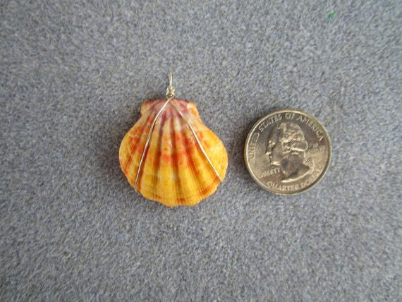 Very High Quality Kauai Sunrise Shell Pendant - Unique Color - Red, Orange, Yellow, Purple and White
