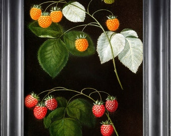 FRUIT PRINT Raspberry 8X10 Botanical Art Print 2 Antique Brookshaw Beautiful Golden Blue Red Raspberries Berries to Frame Home Decoration
